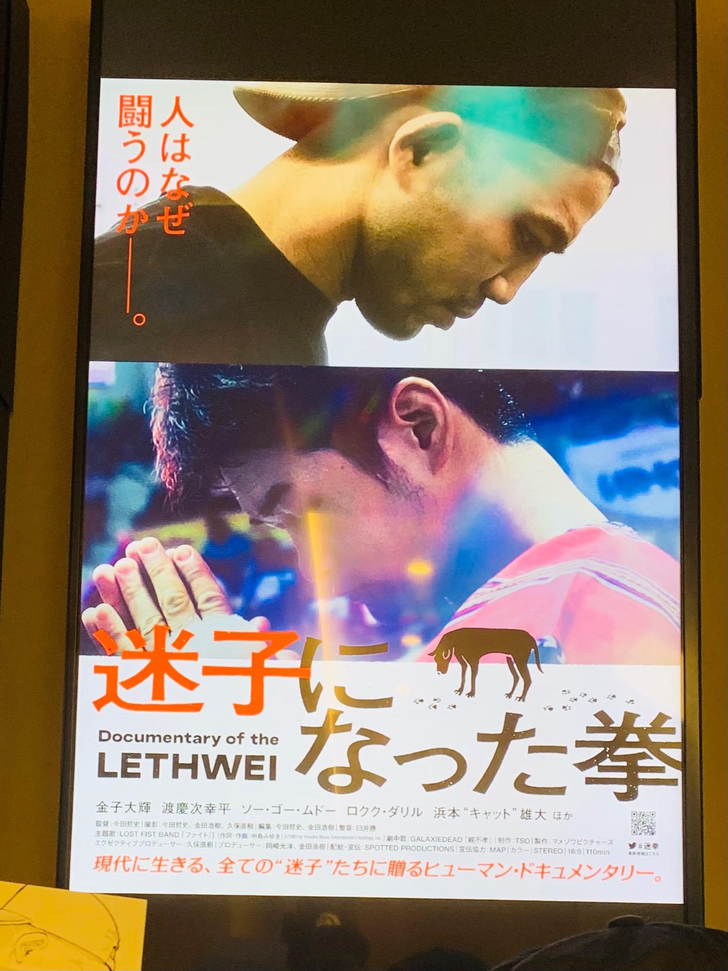 映画「迷子になった拳」鑑賞